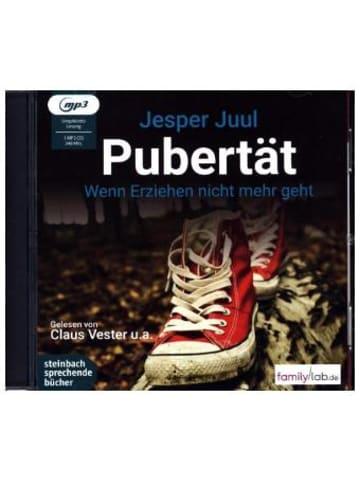 Steinbach sprechende Bücher Pubertät - Wenn Erziehen nicht mehr geht, 1 MP3-CD