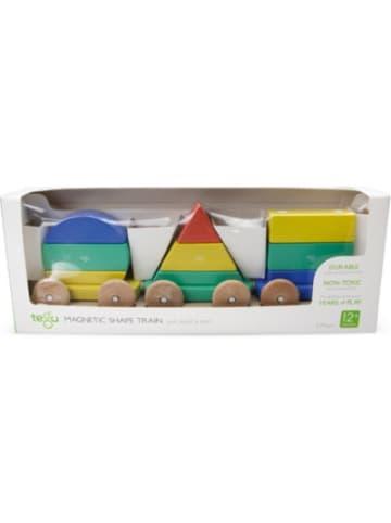 Tegu Baby Großer Zug Holz-Formen, 9 Teile, Magnetspielzeug