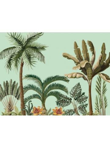 "Contento 4er-Set Platzset ""Colonial Palms"", 40x30 cm"