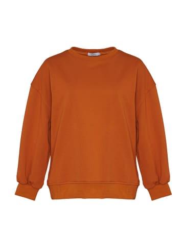 Noella Langarm-Sweatshirt Tatum in terracotta