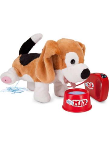 Stadlbauer Pipi-Max Beagle
