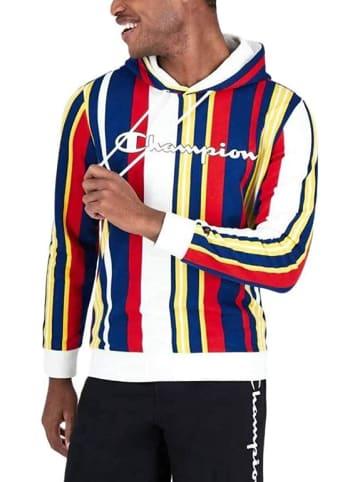 Champion Sweatshirt Hooded Sweatshirt in Multicolor