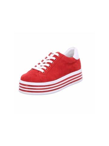 Tizian Sneakers in rot