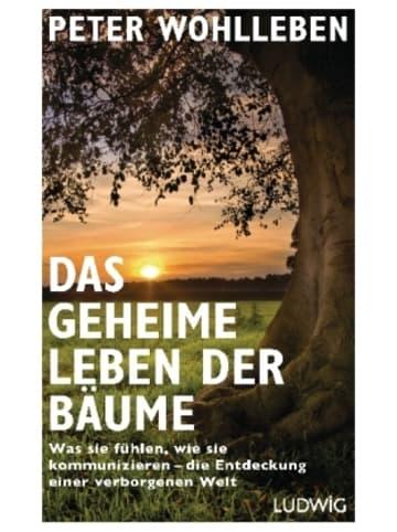 Ludwig Das geheime Leben der Bäume