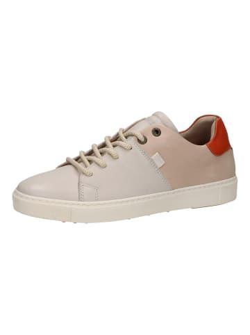 Sansibar Sneaker in Hellgrau