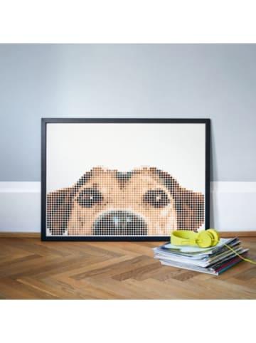 Dot on  art - animals - dog, 50 x 70 cm