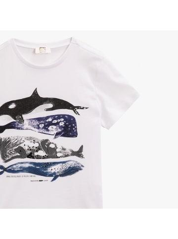 Mamino Kindermode Jungen T-Shirt -Wale in weiss