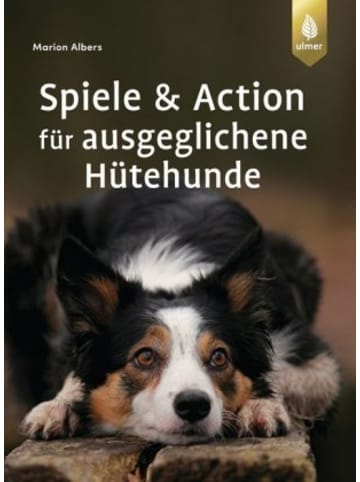 Eugen Klein Spiele und Action für ausgeglichene Hütehunde