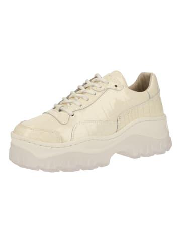 Bronx Sneaker in Beige