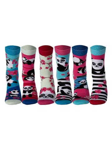 United Oddsocks Socken in Bamboozle