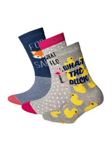 Cockney Spaniel Socken 3er Pack in Fuchs