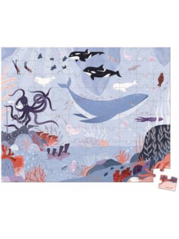 JANOD Puzzle Arktischer Ozean, 100 Teile