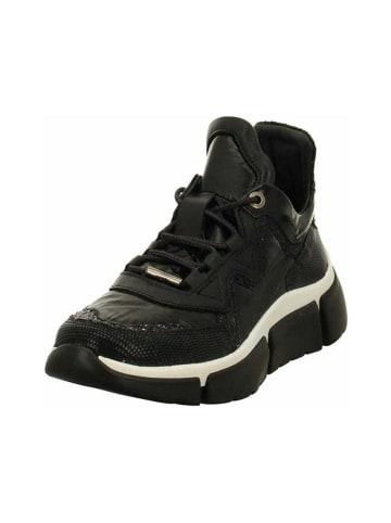 Cetti Sneakers in schwarz
