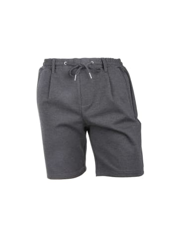 Jack & Jones Hosen & Shorts in grau