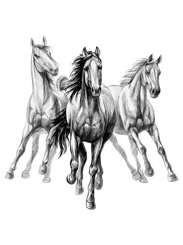 """Dekodino Wandtattoo """"Kinder Pferde 3er Set im Zeichenstil Pferdekopf"""" in Schwarz / Weiß"""