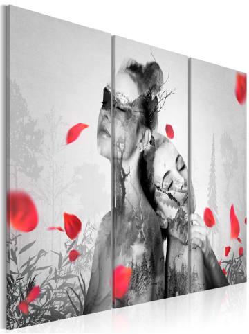 Artgeist Wandbild Natürliche Schönheit in schwarz-weiß,Rot