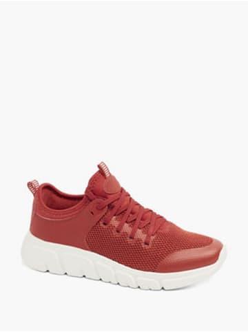 Venice Sneaker rot