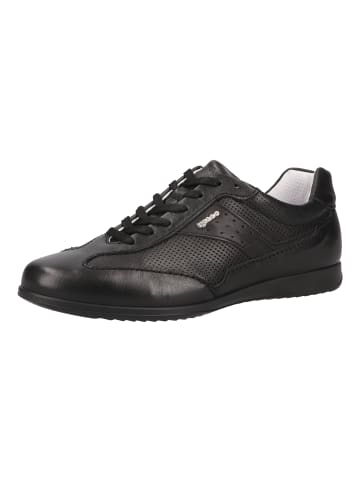 Igi&Co Sneaker in Schwarz