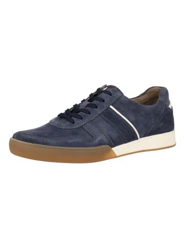 Pius Gabor Sneaker in Blau