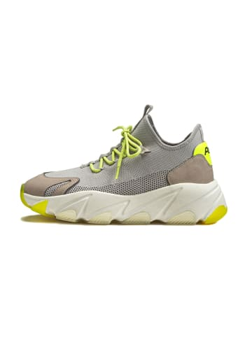 Ash Sneaker Enigma in grau