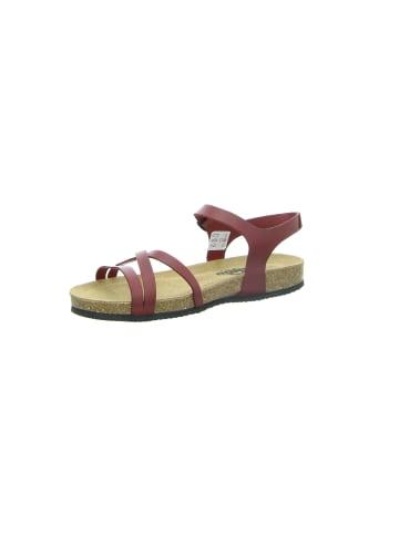 Longo Sandalen/Sandaletten in rot