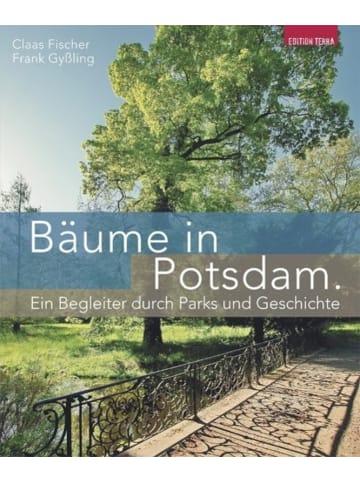 Terra press Bäume in Potsdam   Ein Begleiter durch Parks und Geschichte