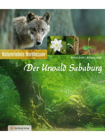 Wartberg Verlag Der Urwald Sababurg   Naturerlebnis Nordhessen