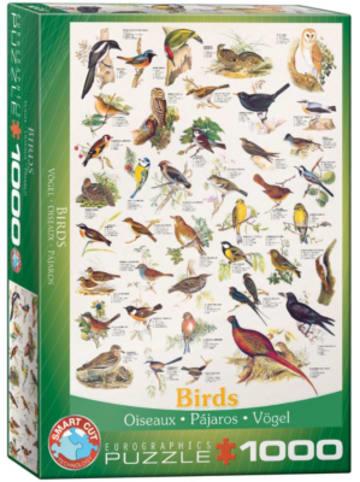 Eurographics Puzzle 1000 Teile-Vögel