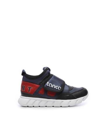 Tanca kids Jungen Sneaker in dunkelblau