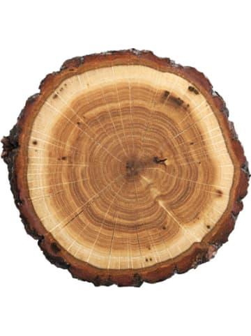 """Contento Platzset """"Tree slice"""", 40x30 cm"""