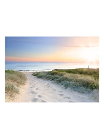 Artgeist Fototapete Spaziergang am Strand in Grün,Himmelblau,Gelb,Beige,Orange
