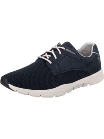 Pius Gabor Sneakers Low