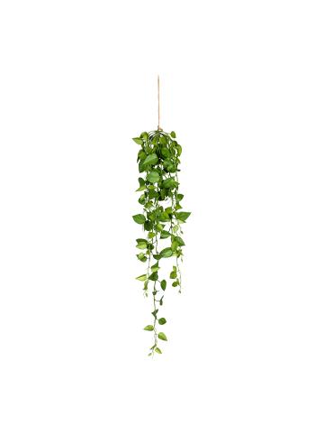 Creativ green Deko-Hänger Philodendron-Hängezopf in grün