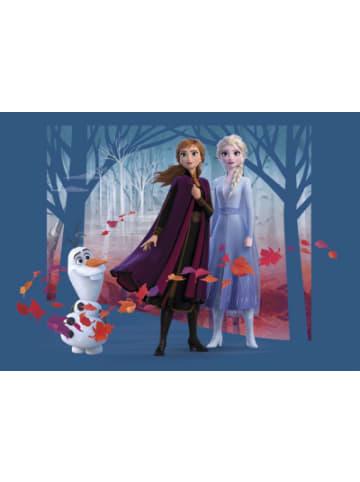 AG Design Wandtapete Disney Frozen, 160 x 110 cm