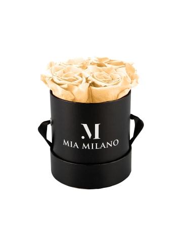 Mia Milano Infinity Rosen Konservierte Rosen in champagner