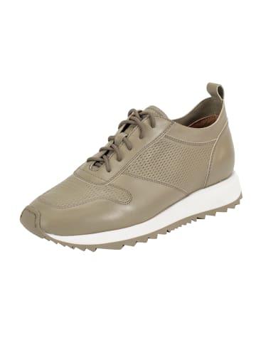 Ekonika Sneaker in khaki