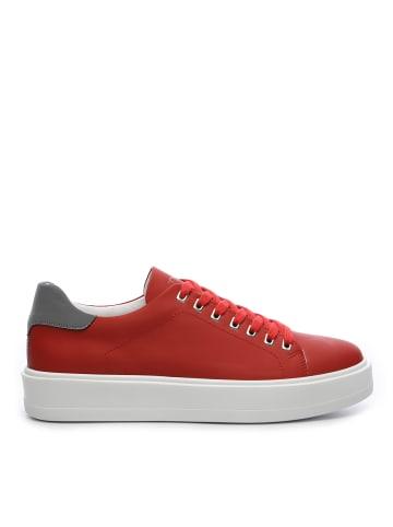 Tanca Herren Sneaker low in rot