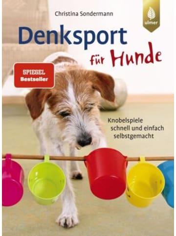 Ulmer Denksport für Hunde