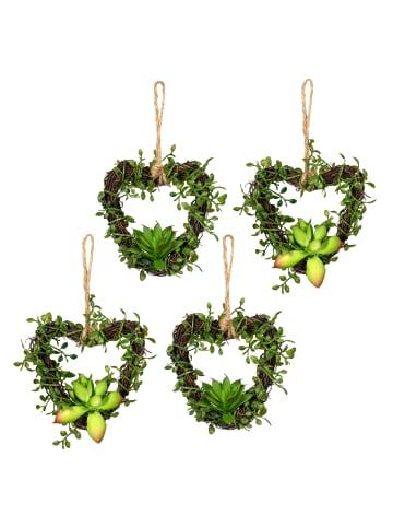 Creativ green Deko-Hänger Mühlenbeckiaherz 4er Set in grün