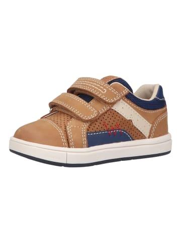 Geox Sneaker in Caramel