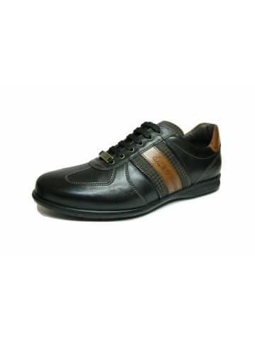 Galizio Torresi Schnürschuhe in schwarz