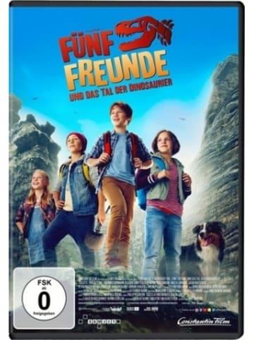 UNIVERSAL Fünf Freunde und das Tal der Dinosaurier, 1 DVD