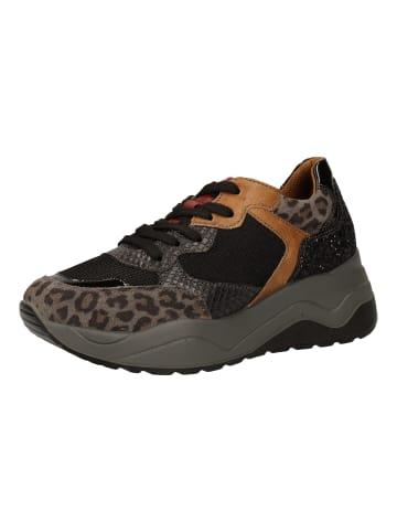 Igi&Co Sneaker in Asphalt