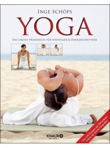 Droemer Yoga - Das große Praxisbuch für Einsteiger & Fortgeschrittene