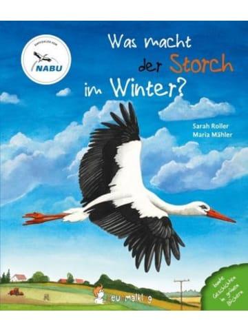 Neunmalklug Was macht der Storch im Winter?
