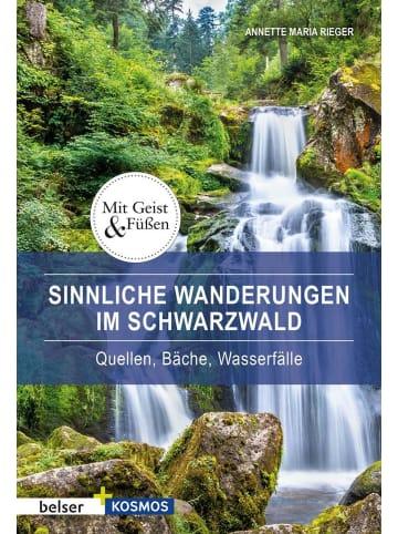 Belser Sinnliche Wanderungen im Schwarzwald | Quellen, Bäche, Wasserfälle