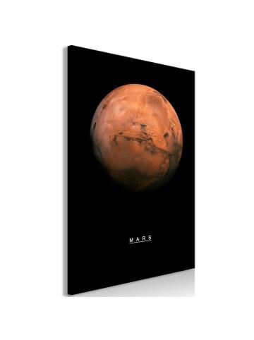 Artgeist Wandbild Mars (1 Part) Vertical in Weiß,Braun,Schwarz