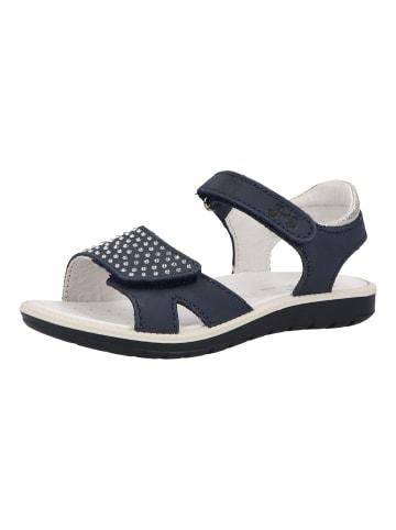 Primigi Sandalen in Blau/Weiß