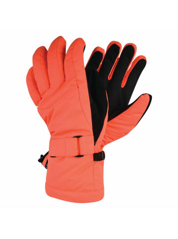 Dare 2b Winterhandschuhe Acute Glove in Fiery Coral