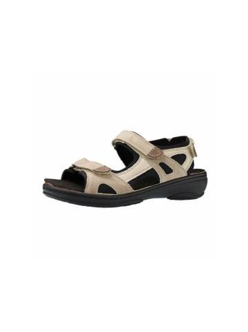 Fidelio Sandalen/Sandaletten in schlamm
